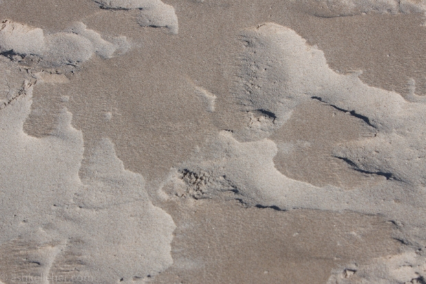 What strong winds do to sand.