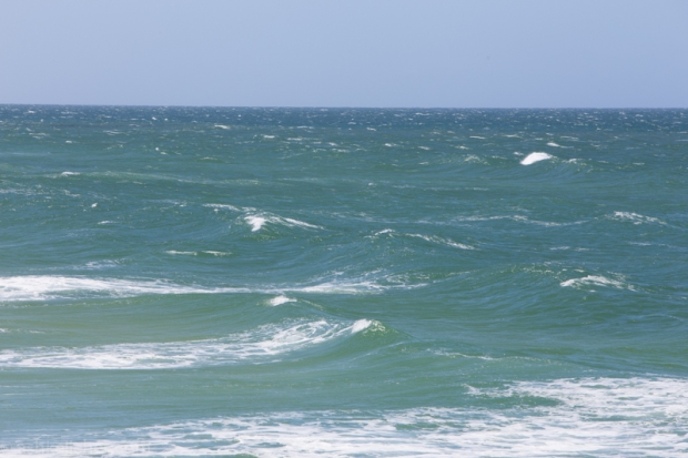 The wind has come in strong and from the 'blow the swell away' direction.
