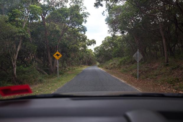 The empty roads.